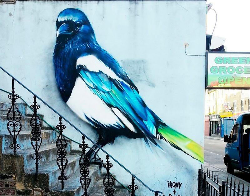 irony pájaro 2