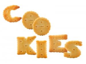 Hablando sobre Cookies, ¿qué son exactamente?